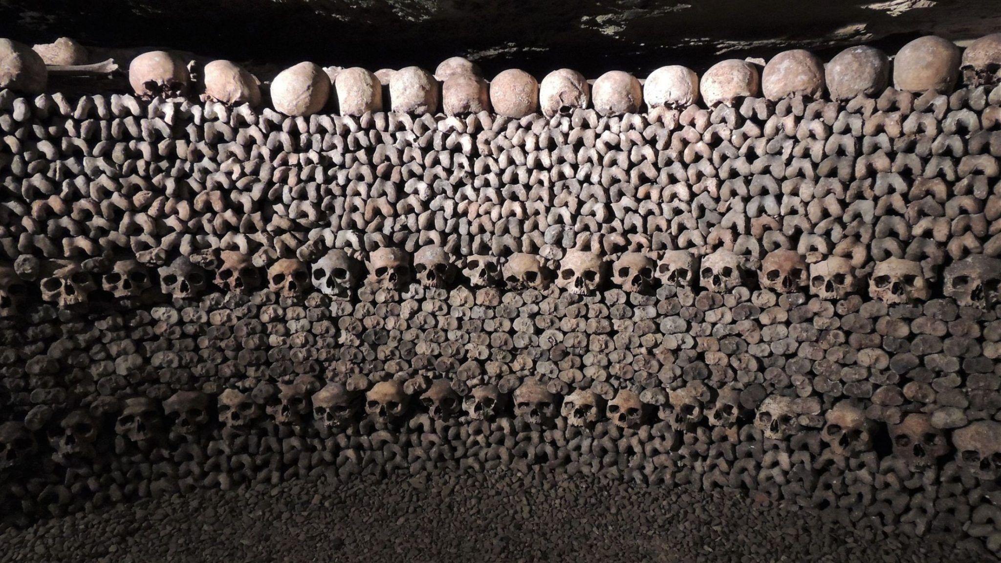 skulls-1233643_1920