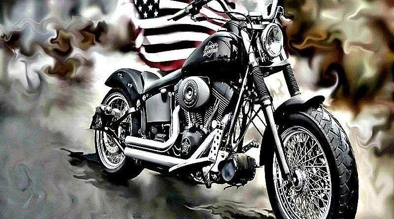 Harley Davidson USA Pride 1