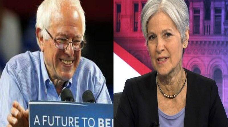 Sanders Stein word press