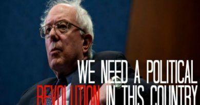 Pledge Bernie Wordpress