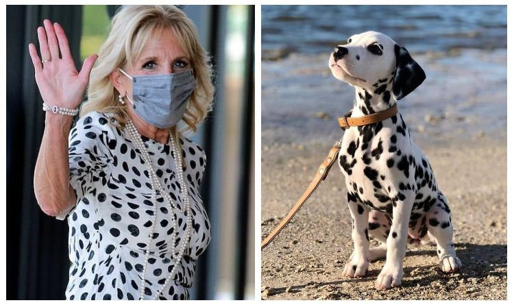 Photos: Jill Biden Masks Up And Looks Like A 101 Dalmatians Cruella De Vil At The 2021 Olympics Opening Ceremony