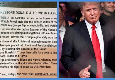 Images: The 7-Point-Plan To Reinstate Donald Trump As President That Was Allegedly Handed Out At CPAC Is Just Another Blue Anon Bait